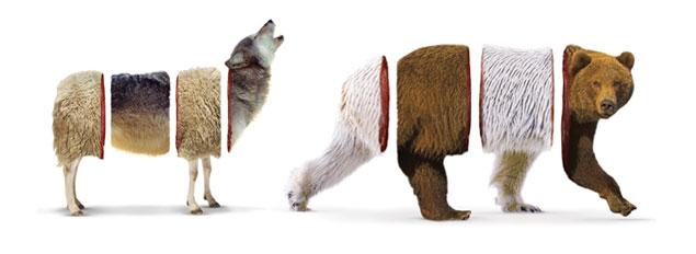 Sheolf & Bear