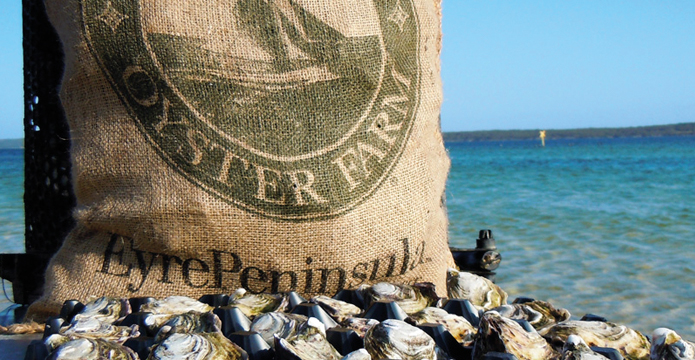 Coffin Bay Oyster Farm brand strategy and design