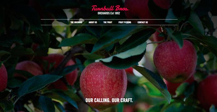 Turnbull Bros Web site header