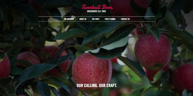 web branding agency
