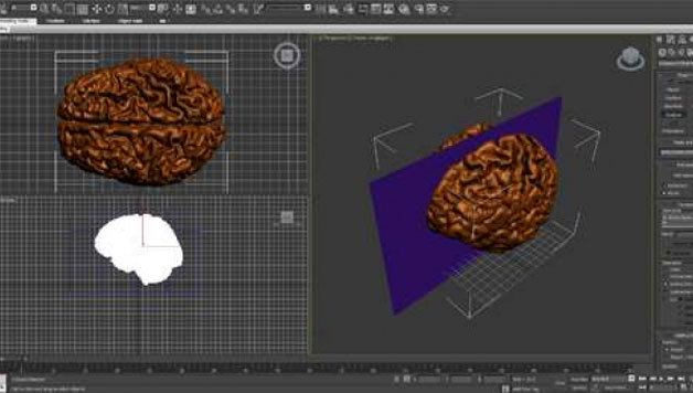 Branding design Chocolate Brain Design