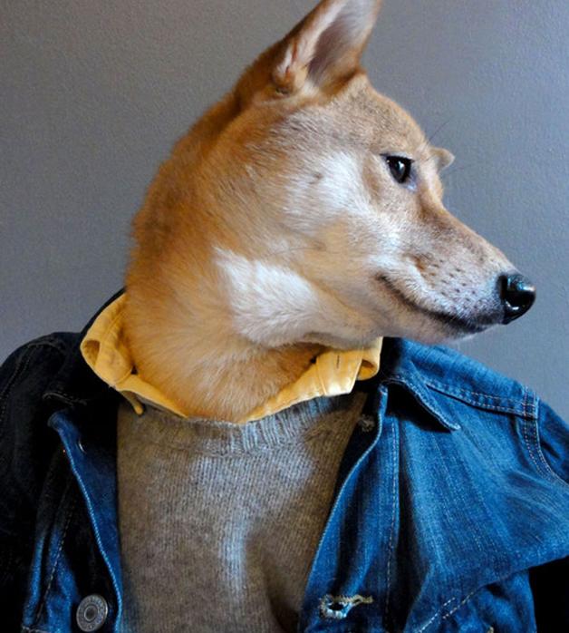 mensweardog_denimjacket