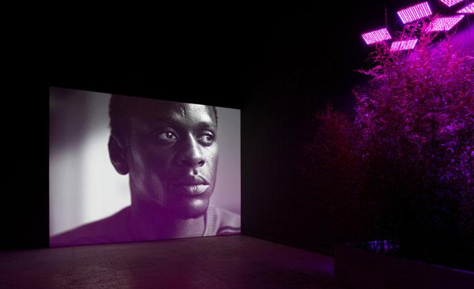 24_Venice-Biennale_Danish_Pavilion_1