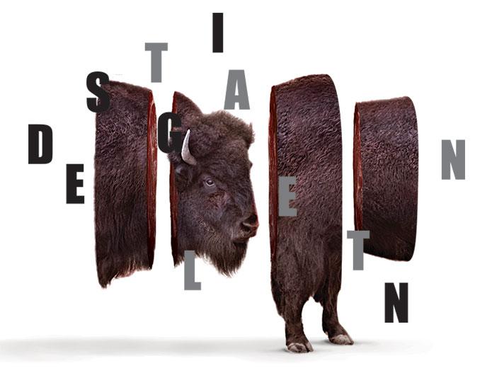 Truly-Deeply-Branding-Buffalo