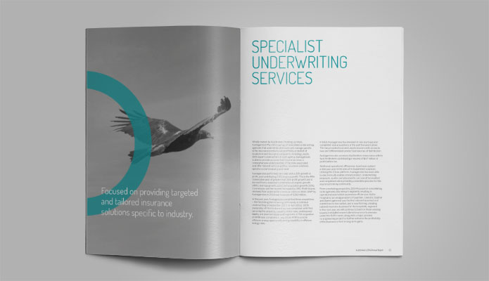 Austbrokers annual report spread