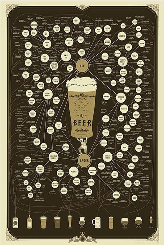 Beer-Info-graphic