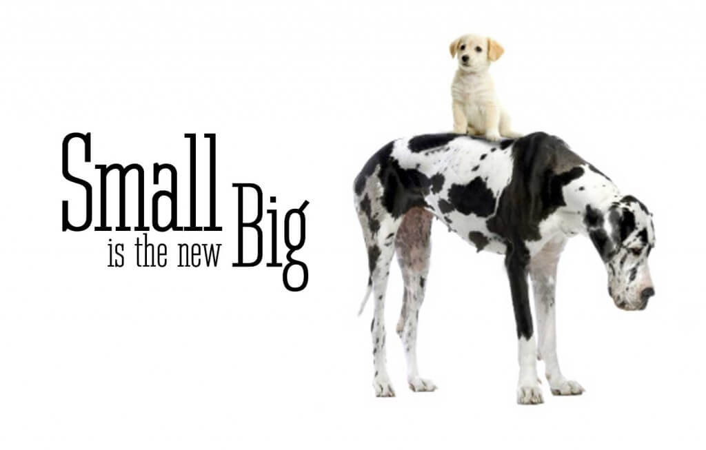 small-is-the-new-big1-1024x653