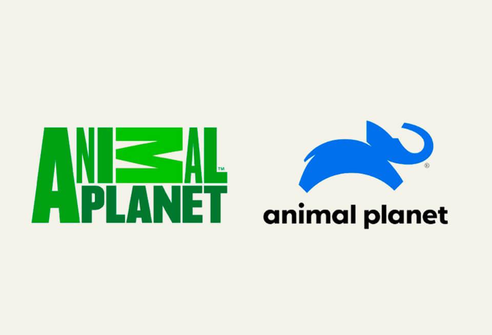 animal planet logo redesign